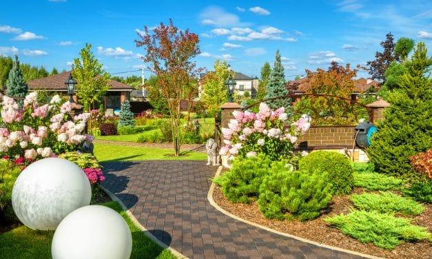 Comment aménager un jardin bucolique, tous nos conseils pratiques