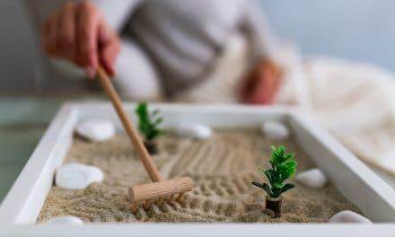 Comment faire un jardin zen miniature ?