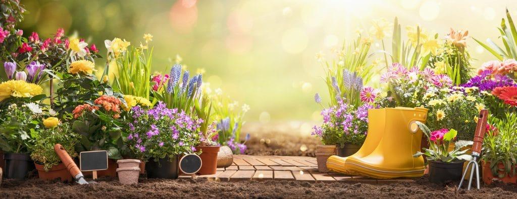 jardin insolite