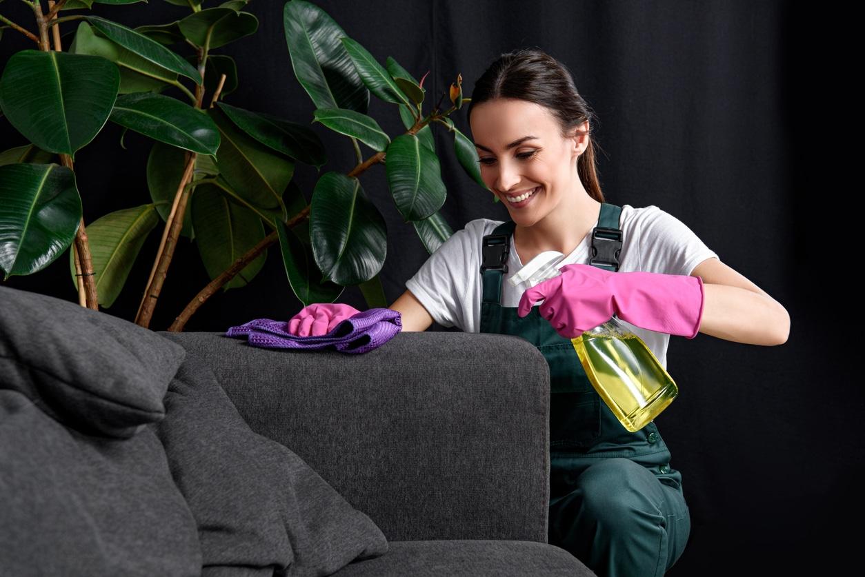 Nettoyage de canapé