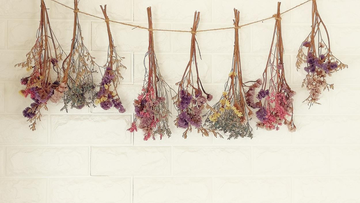 Fleurs séchées au mur